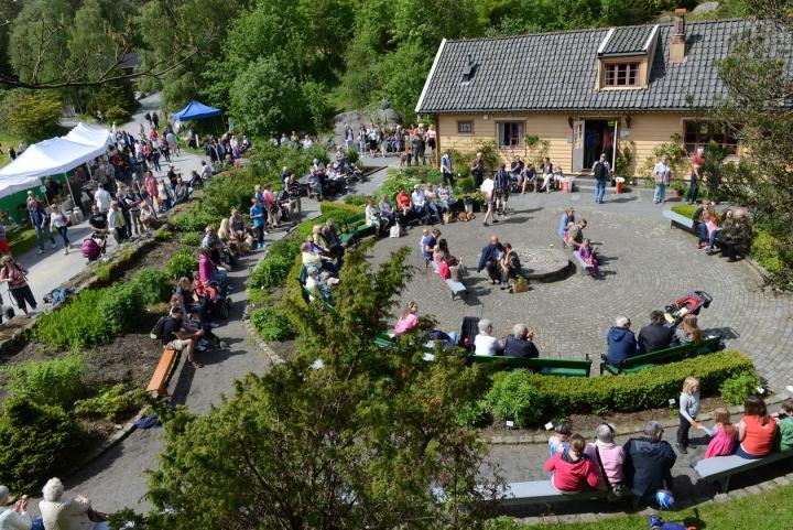 Arboretets dag Bergen 950 år | Universitetsmuseet i Bergen